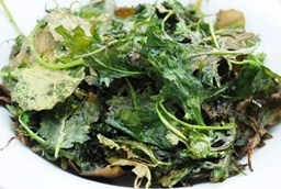 Krispy Kale Chips to post