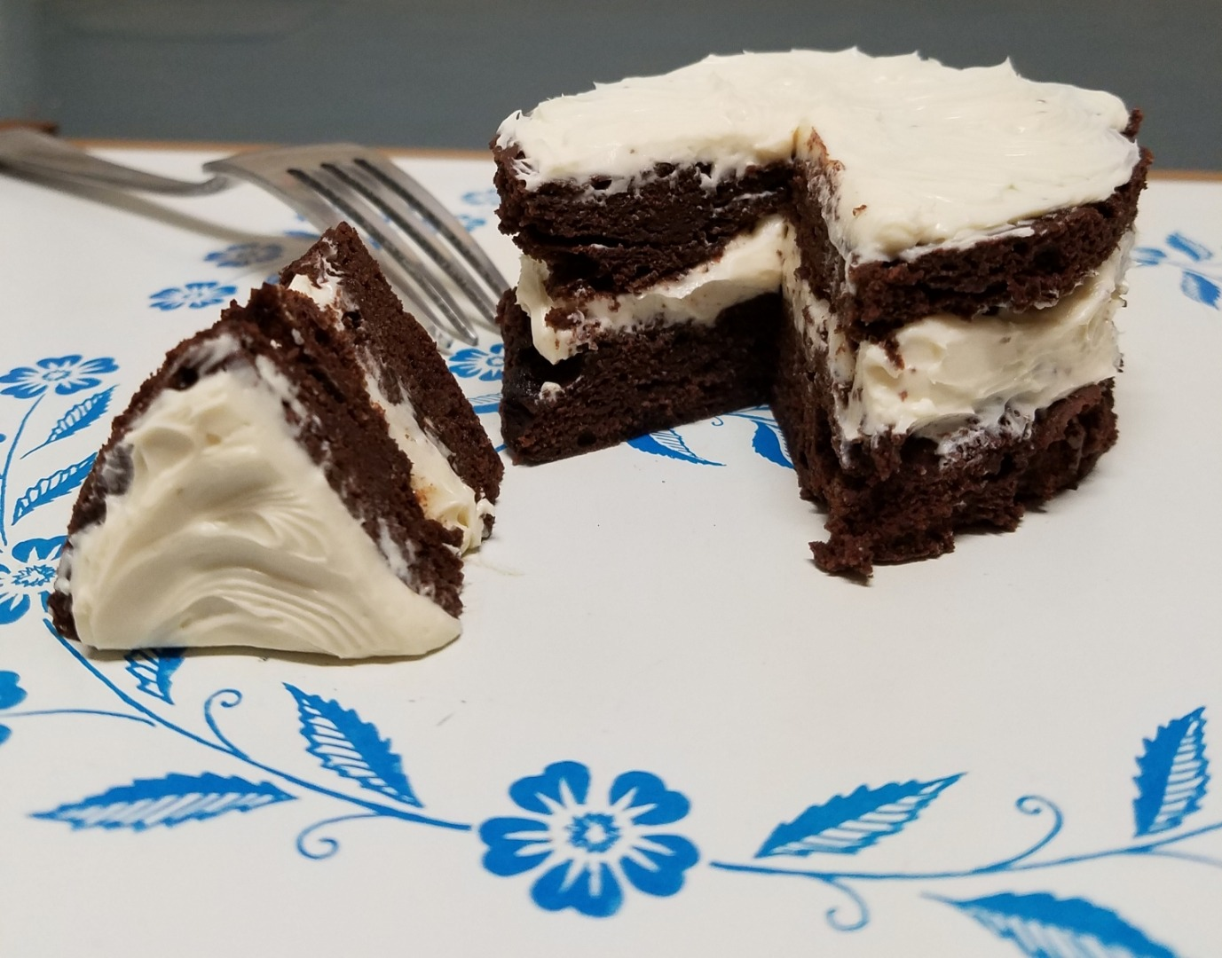 CardioMenderMD chocolate cake with frosting